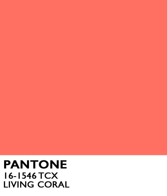 living coral what you need to know now about the 2019 pantone color of the year carrie colbert